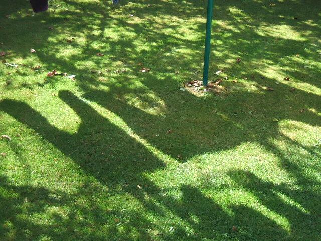 2008_0815Image0002