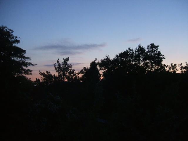 2010_0621Image0003